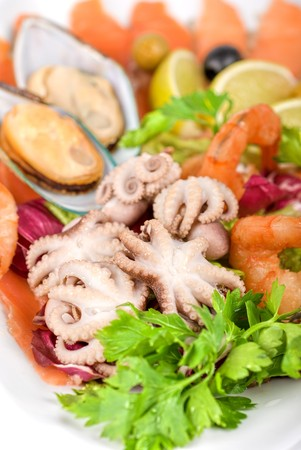 appetizer closeup of different seafood and vegetables photo