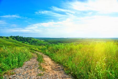 Summer landscape with green grass, road and clouds Stock Photo - 7608650