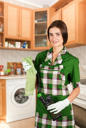 Beauty housewife with duster and detergent photo