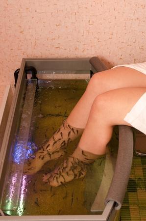 Fish spa pedicure wellness skin care treatment photo