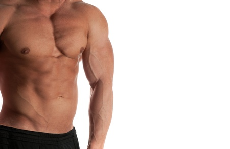 Muscular male torso of bodybuilder on white background Stock Photo - 13210666
