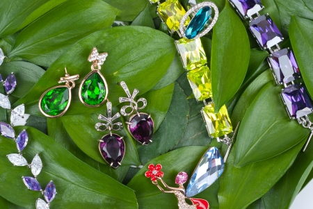 Jewelry with gems at green leaves Stock Photo - 13681201