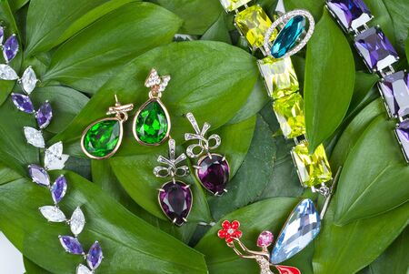 Jewelry with gems at green leaves Stock Photo - 13722905
