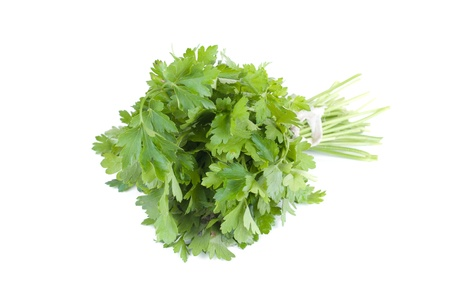 a bunch of parsley on a white background photo