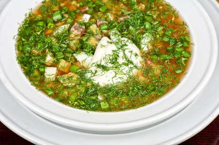 Traditional Russian kvass soup with vegetables - okroshka Stock Photo - 21443362