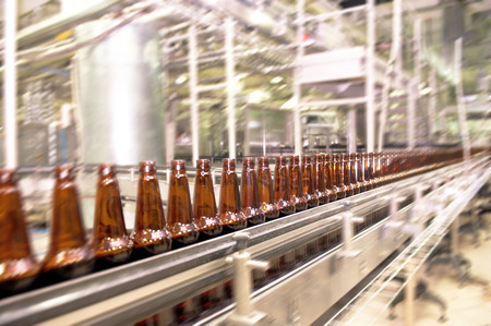 Beer bottles on the conveyor belt photo