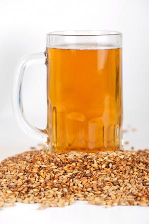 beer glass at malt grains on white  photo