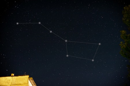 stellate: Constellations. Ursa Major (Great bear) on the night sky