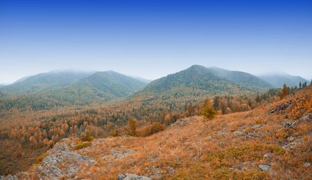 the taiga: taiga and mountains in beauty autumn morning