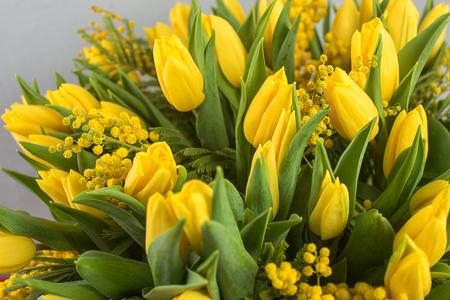 flores de cumpleaños: soleada de primavera ramo de tulipanes y flores de mimosa. El tema del Día de la Madre o de Pascua.
