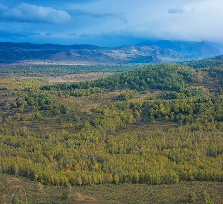 altay: Altay mountains in beauty day, Siberia, Russia