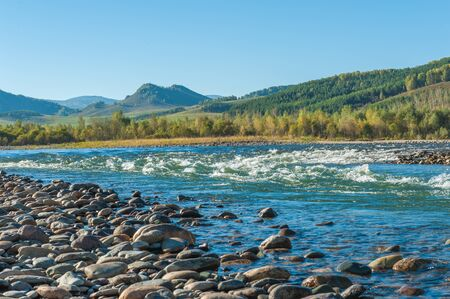 Fast mountain river in Altay Stock Photo