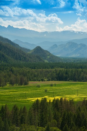 Beauty colors of summer Altai