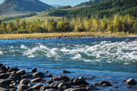 Fast mountain river Charish with the purest water in Altay mountains, Siberia, Russia Stock Photo