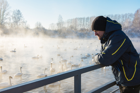 Man at winter nonfreezing lake with white whooping swans. The place of wintering of swans, Altay, Siberia, Russia. Stock Photo - 97846837