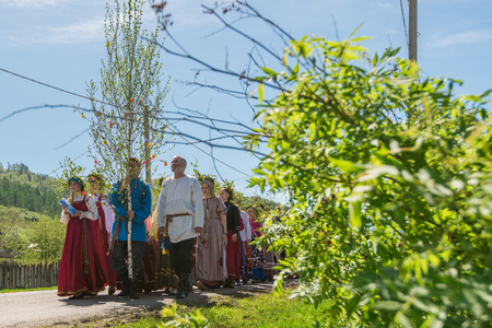 TOPOLNOE, ALTAY, RUSSIA - May 27, 2018: Folk festivities dedicated to the feast of the Holy Trinity. Ancient Russian rite: procession with a birch for its further sinking.