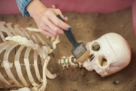 Human fossil discovered concept. Woman hand is using brush to sweep artificial bones fossil in sand.