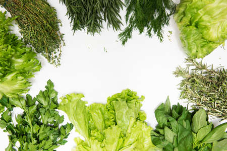 Different types of fresh garden herbs isolated on white background
