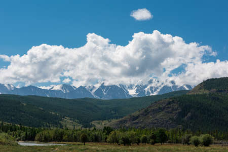 Summer landscape in Altai mountains - flowering meadows and fields against a background of mountains