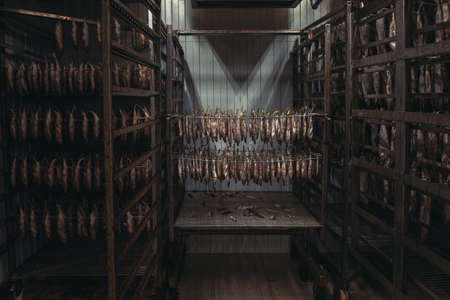 Smoked fish production concept: smoked fish in smokehouse box. 写真素材