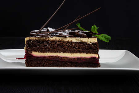 Plate with piece of delicious chocolate cake 写真素材