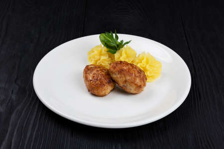 Chicken meat cutlet with mashed potatoes 写真素材