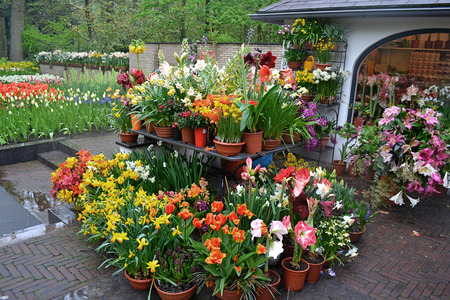 Green house shop with potted flowers at garden centre Imagens