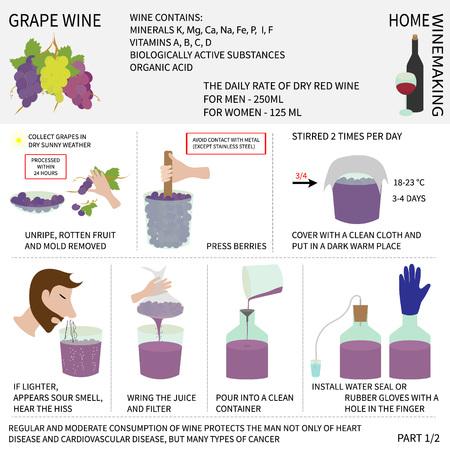 pressure bottle: Inicio vinificaci�n. Vino de uvas. Paso a paso las instrucciones sobre c�mo hacer vino en casa.