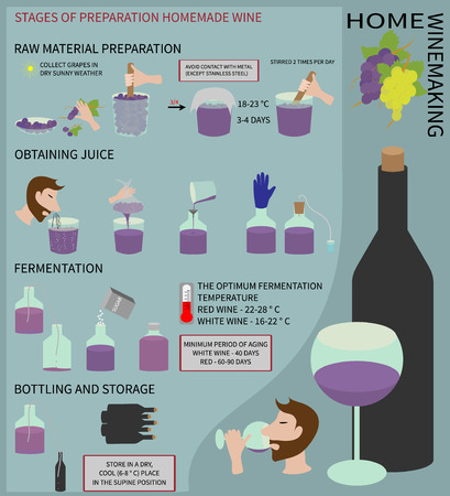 stirring: Home winemaking. Wine from grapes. Step by step instructions on how to make wine at home. Illustration