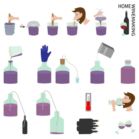 winemaking: Set elements of infographics on the topic Home winemaking. Illustration