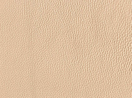 beige leather photo