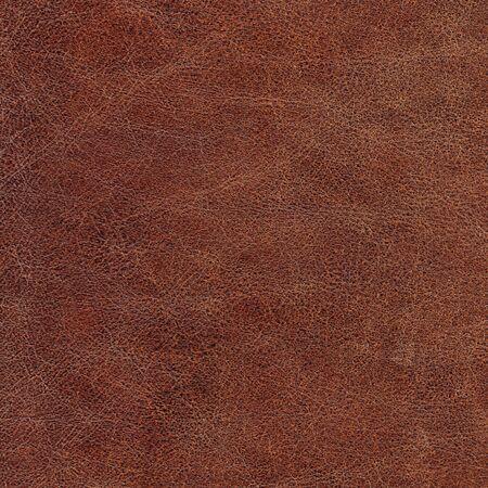 texture cuir marron: en cuir v�ritable Banque d'images