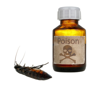 old bottle of poison and dead cockroach isolated on white background Stock Photo