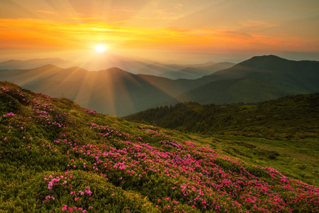 Landscape in the mountains with the sunset. Ukraine, the Carpathian mountains photo