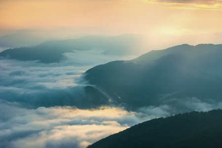 carpathian: summer Carpathian landscape Stock Photo