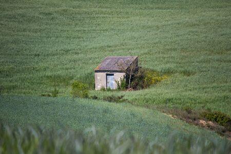 far: Far away house on the grass Stock Photo