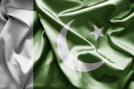 flag of pakistan: Flag of Pakistan