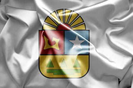roo: Flag of Quintana Roo Stock Photo