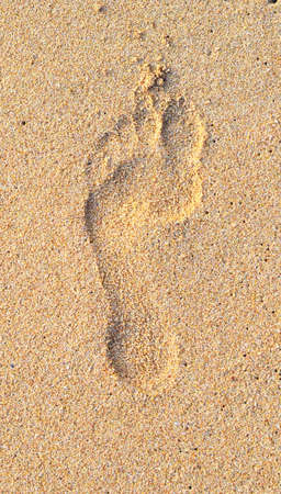 single footprint on wet beach sand photo