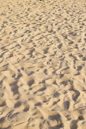 sea sand with footprints  photo