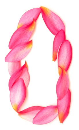 letter O made from beauty flower petals on white Stock Photo - 18015057