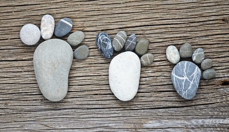 pebble family concept