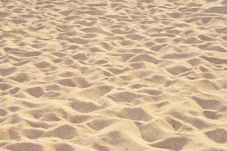 砂のビーチの背景