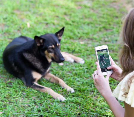 Woman taking a shot of her dog on her mobile phone