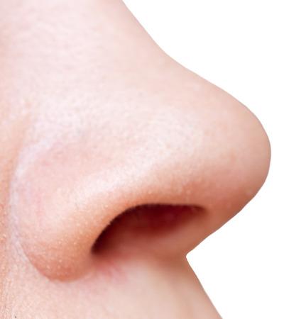 Nose isolated on white Foto de archivo - 124172908