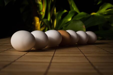 Brown and white eggs with reflection on wood background photo