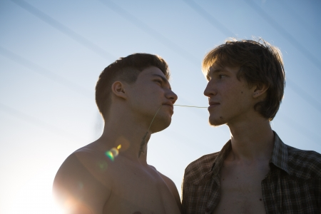 gay lifestyles: Portrait of a happy gay couple outdoors