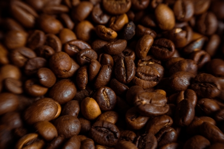 coffeetree: Coffee on grunge wooden background Fresh coffee beans on wood and linen bag, ready to brew delicious coffee