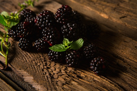 Sweet fresh  blackberry in the wood bawl photo