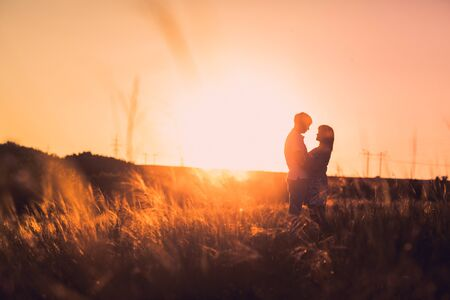 meadow: Romantic couple standing  and kissing on background summer meadow sunset Stock Photo